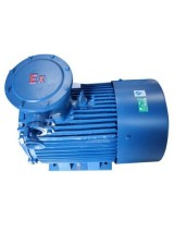 Electric Motor Explosion Proof